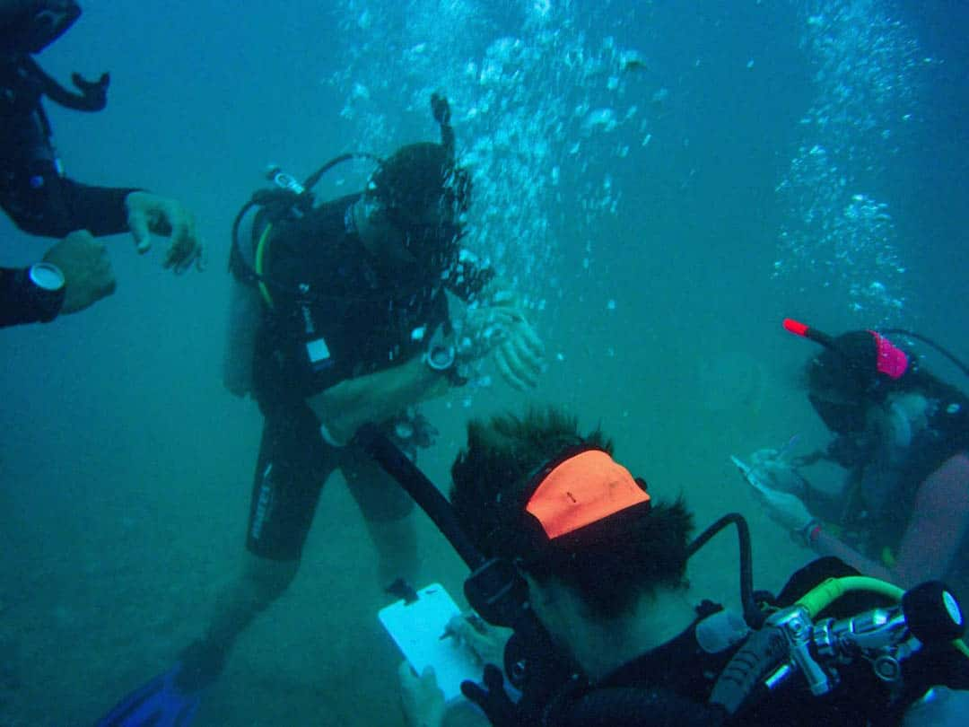 idckohtao.com-deep-instructor-specialty-diving-padi-msdt-course