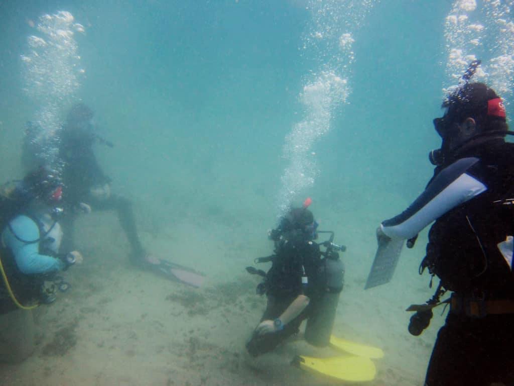 idckohtao.com-open-water-rescue-exercises-open-water-mock-exam