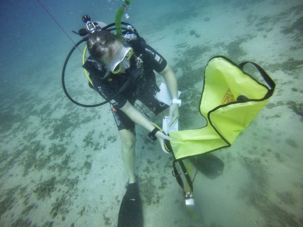 idckohtao.com-padi-adventures-in-diving-search-and-recovery-instructor-specialties