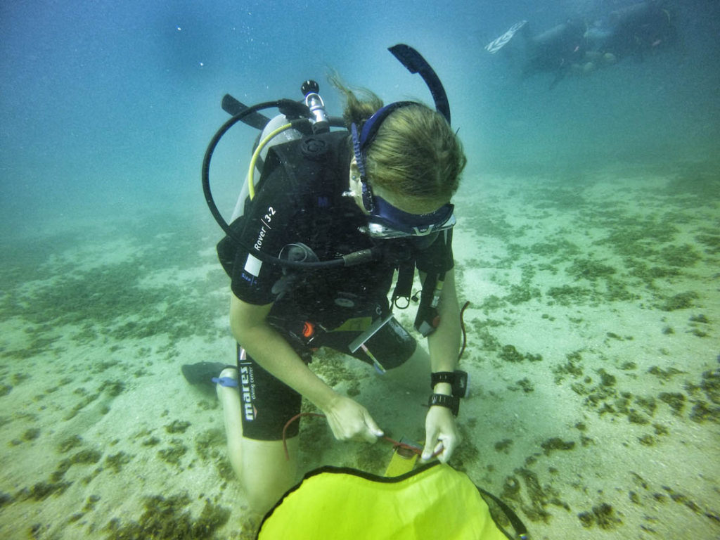 idckohtao.com-padi-adventures-in-diving-search-and-recovery-instructor-specialty-course-in-kohtao