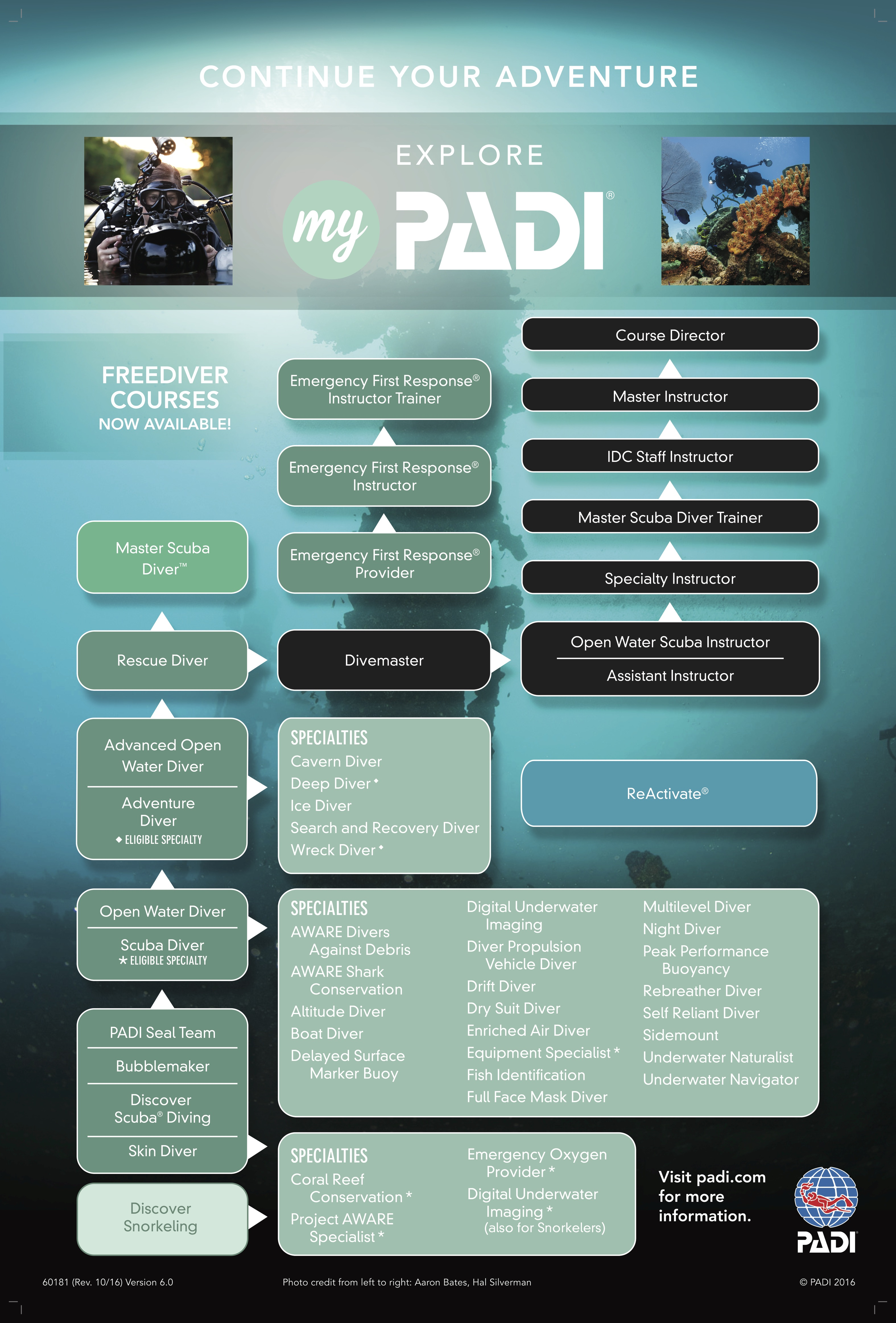 A complete guide to the padi divemaster crystal dive the worlds most popular professional level scuba diving training course divemasters form the backbone of any successful scuba diving operation xflitez Gallery