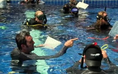6 Reasons to Choose PADI for Pro Level Diver training