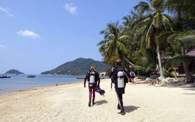 A Complete Guide to the PADI Divemaster