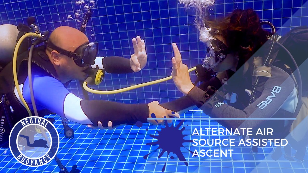 idckohtao.com divemaster skills in neutrally buoyant Alternate Air Source Assisted Ascent
