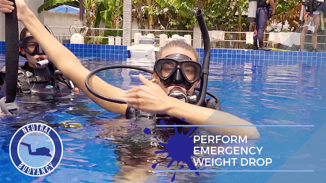idckohtao.com divemaster skills in neutrally buoyant Perform an emergency weight drop