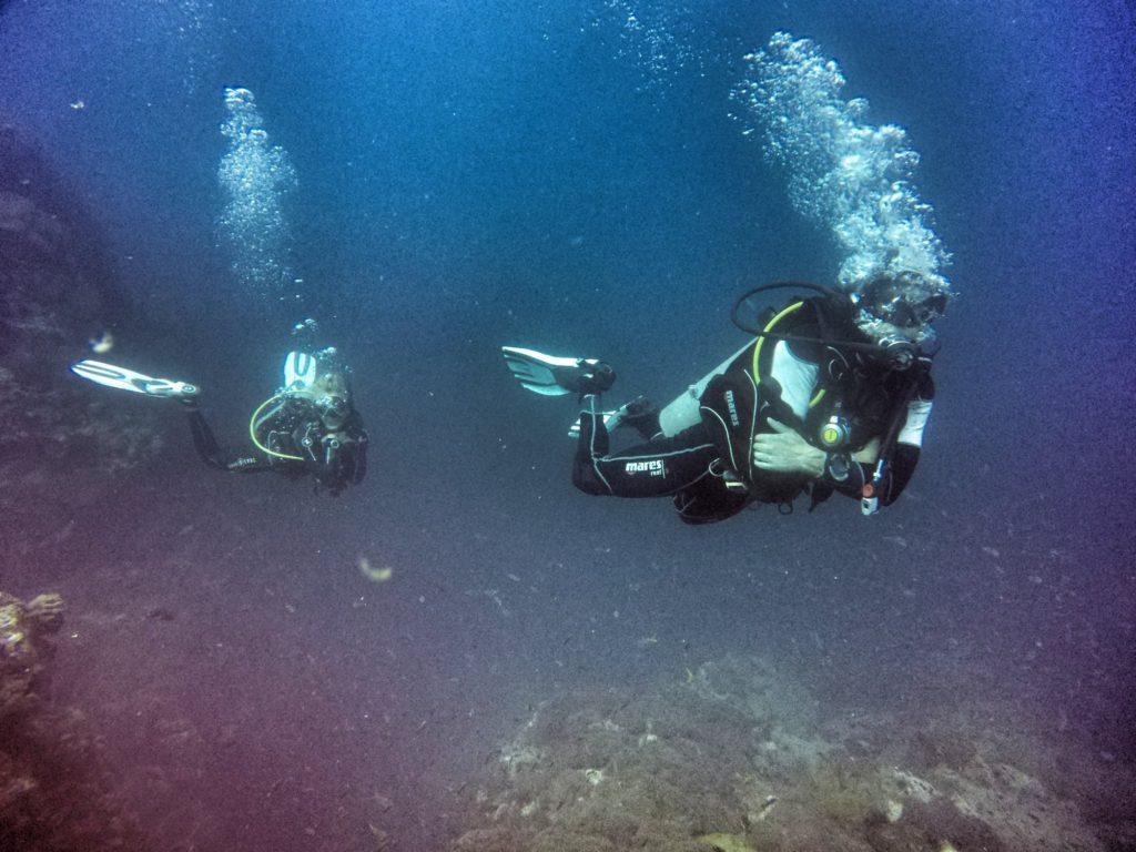 idckohtao.com diving instructor course thailand