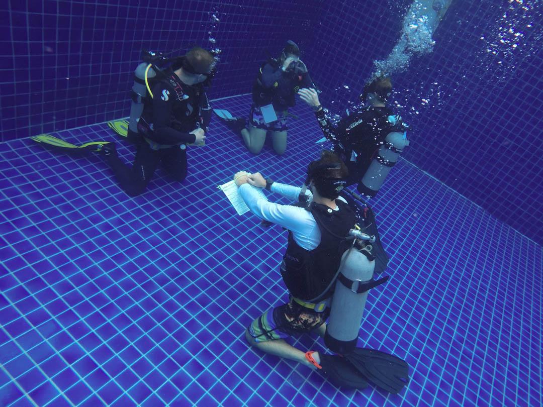 Idc koh tao scuba diving lifestyle packages thailand idckohtao padi instructor development course and scuba xflitez Images
