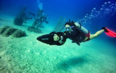 What is a PADI Specialty Instructor