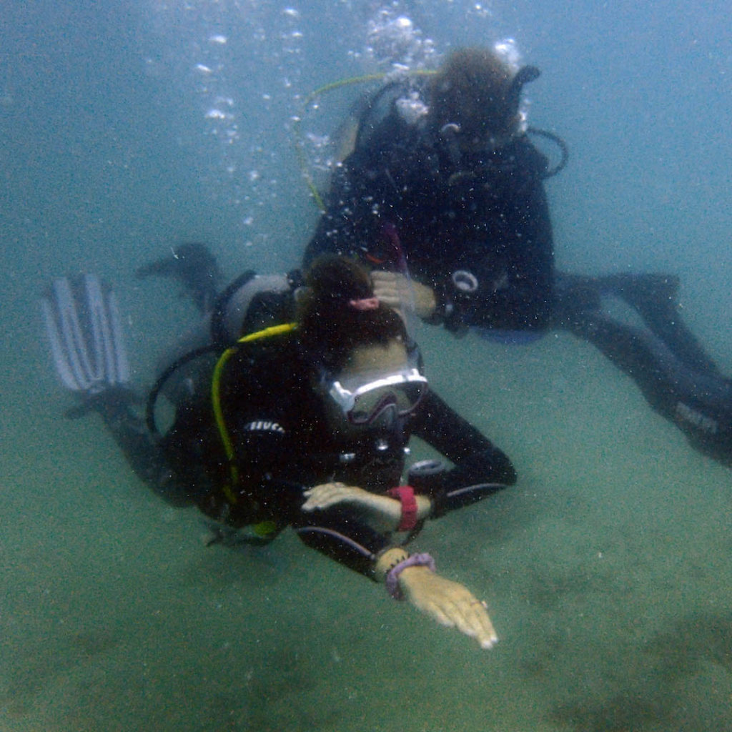 idckohtao.com-padi-underwater-navigation-instructor-specialty-course-crystal-dive-kohtao